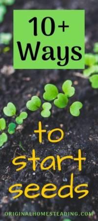 10+ ways to start seeds