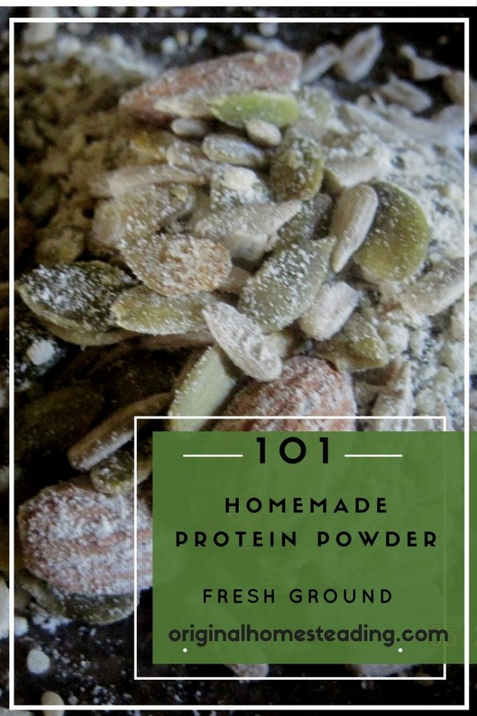Fresh Homemade Protein Powder