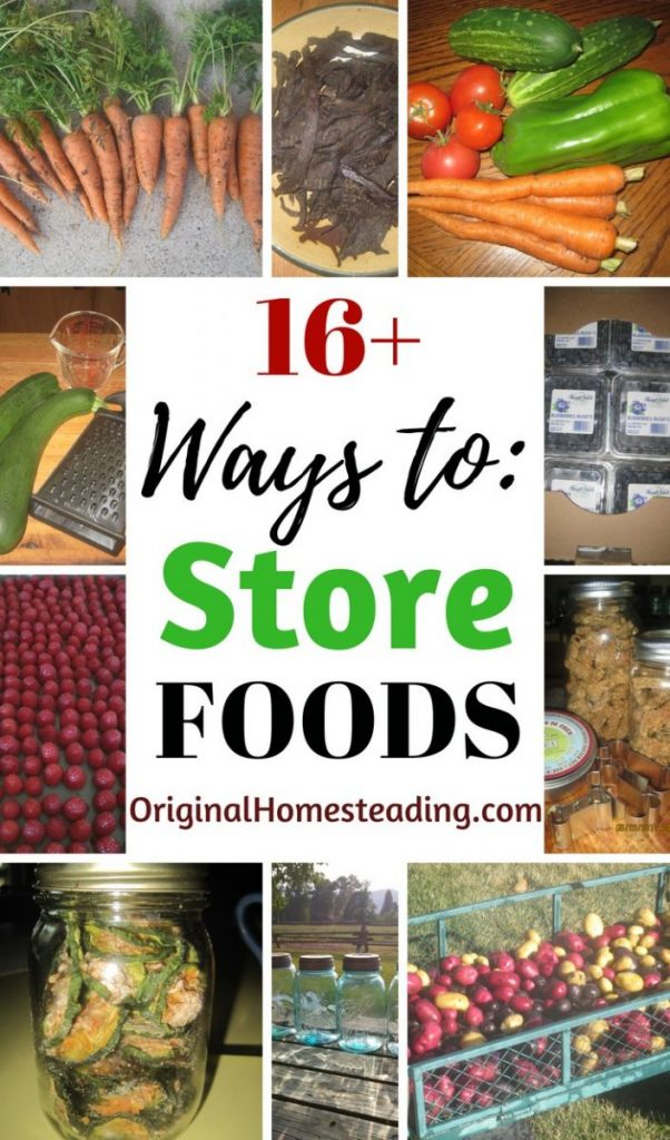16+ Ways to Store Foods is a great list of method to preserve your garden harvest or save money on grocery store sales.