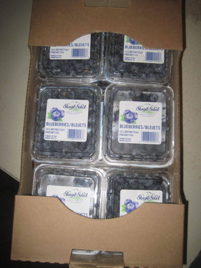 Easy Freezing Blueberries
