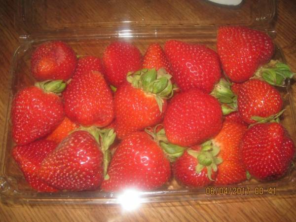 Strawberries Should be Washed Before Freezing