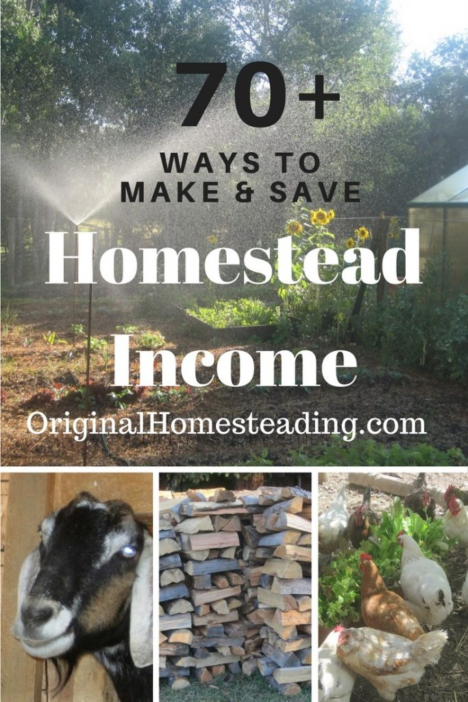 Make and Save Money on Your Homestead