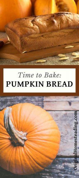Time to Bake Pumpkin Bread