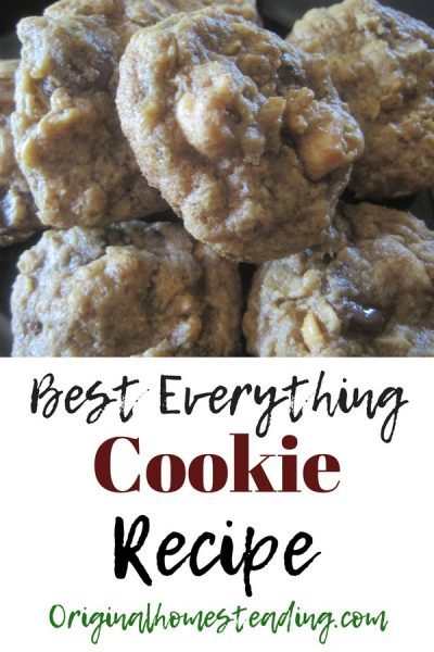 This is the Best Everything Cookie Recipe that includes Chocolate Chips, Raisins, Nuts, Peanut Butter and Oatmeal all in one cookie!