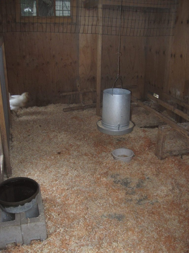 Wood Shaving make a perfect bedding material for the inside of a chicken coop for your laying hens.