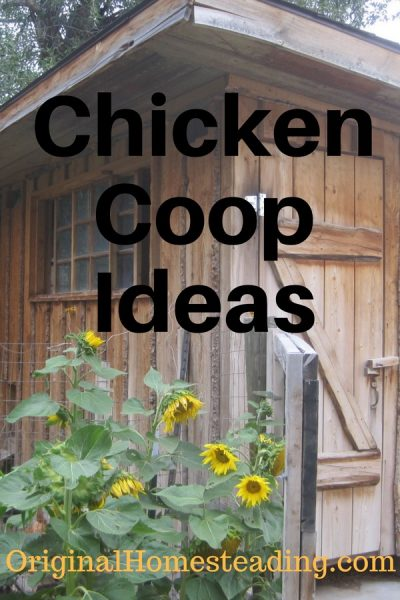 Chicken Coop Ideas are helpful and handy tips that make it easier to raise and keeping a laying flock of chickens.