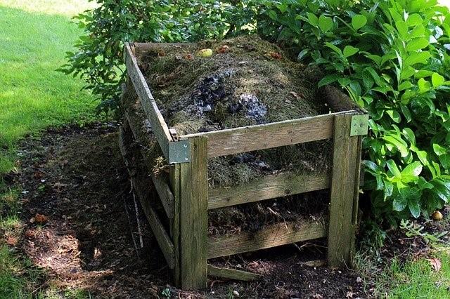 Compost Bin in Shade