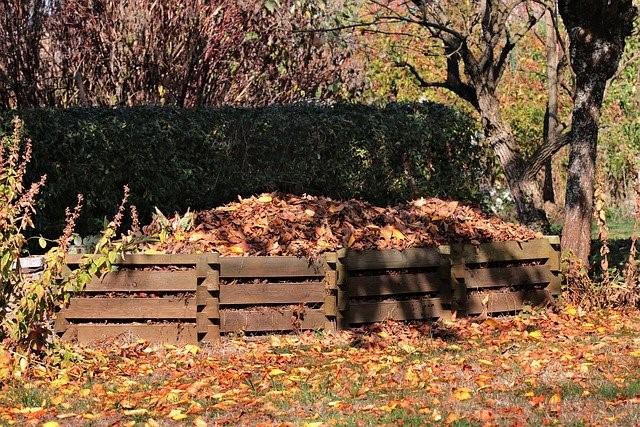 Compost Bin in the Fall