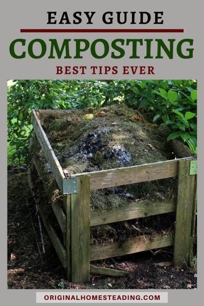 Beginning Guide to Composting Pin