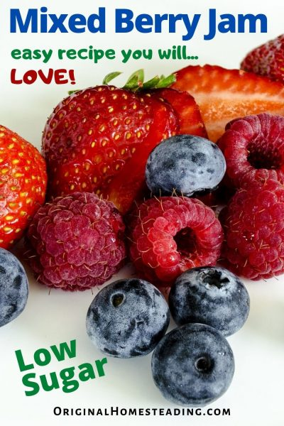 LOW SUGAR MIXED BERRY JAM RECIPE | Fresh or Frozen Berry Jam promo image