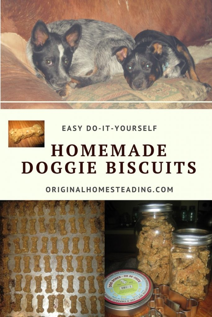 DIY Doggie Biscuits are a perfect way to make a super healthy omega rich treat for your canine friend!