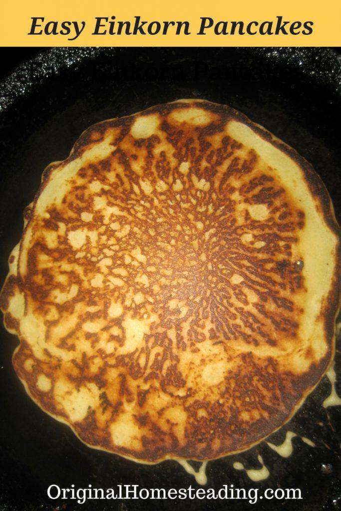 Easy Einkorn Flour Pancakes