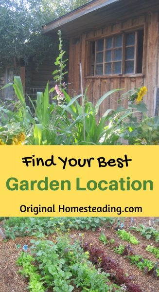 How to Find Your Best Garden Location