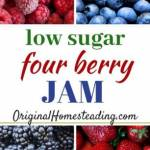 Four Berry Low Sugar Jam can be made with Fresh or Frozen Berries and it is delicious on waffles, pancakes, ice cream and toast.