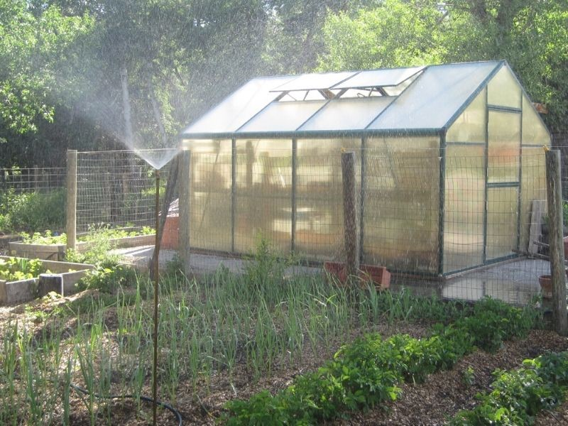 Garden with Greenhouse