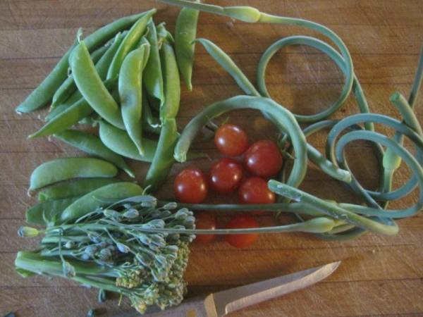Garlic Scapes and Garden Produce