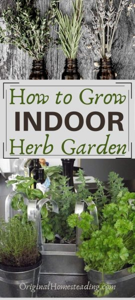 How to Grow an Indoor Herb Garden that You will Love ♥ promo image
