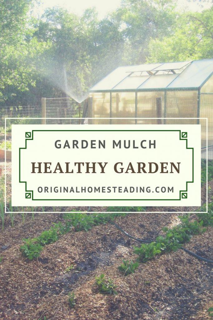 Mulch for Gardening Success