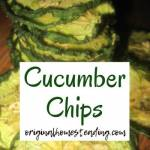 Homemade Cucumber Chips are so easy to make; they are the perfect snack for at home, hiking, backpacking, camping, school lunches or when travelling.