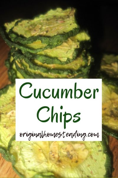Drying Cucumbers | Delicious Healthy Cucumber Chips promo image