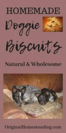 Homemade Doggie Biscuits are easy to make.