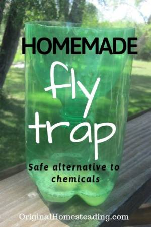 Simple Homemade Fly Trap | DIY Project that Works! promo image