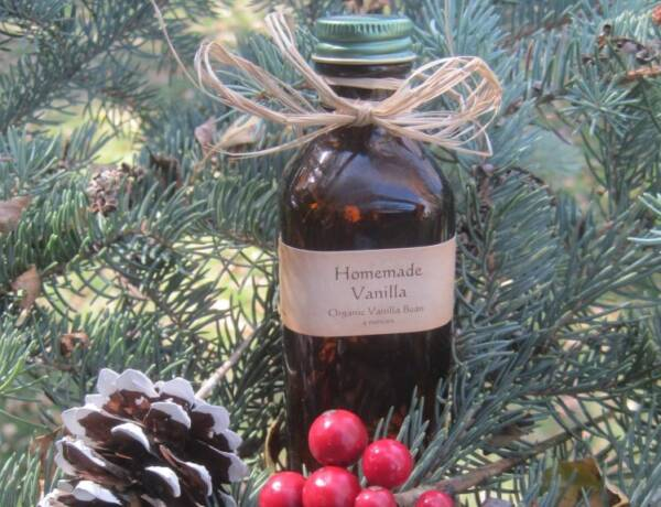 Bottle of Homemade Vanilla with ribbon