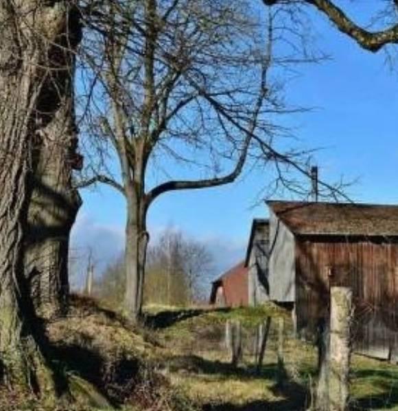 HOMESTEAD SKILLS CHECKLIST | Homesteading Simple Living