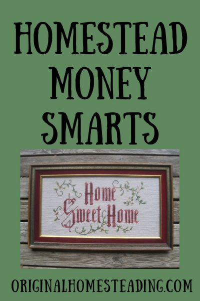 Homestead Money Smarts is learning how to save your hard earned income with practical tips and ideas.