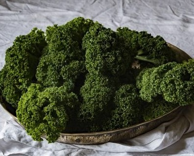 a bunch of fresh picked garden kale in a basket