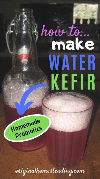 How to Make Water Kefir (2)