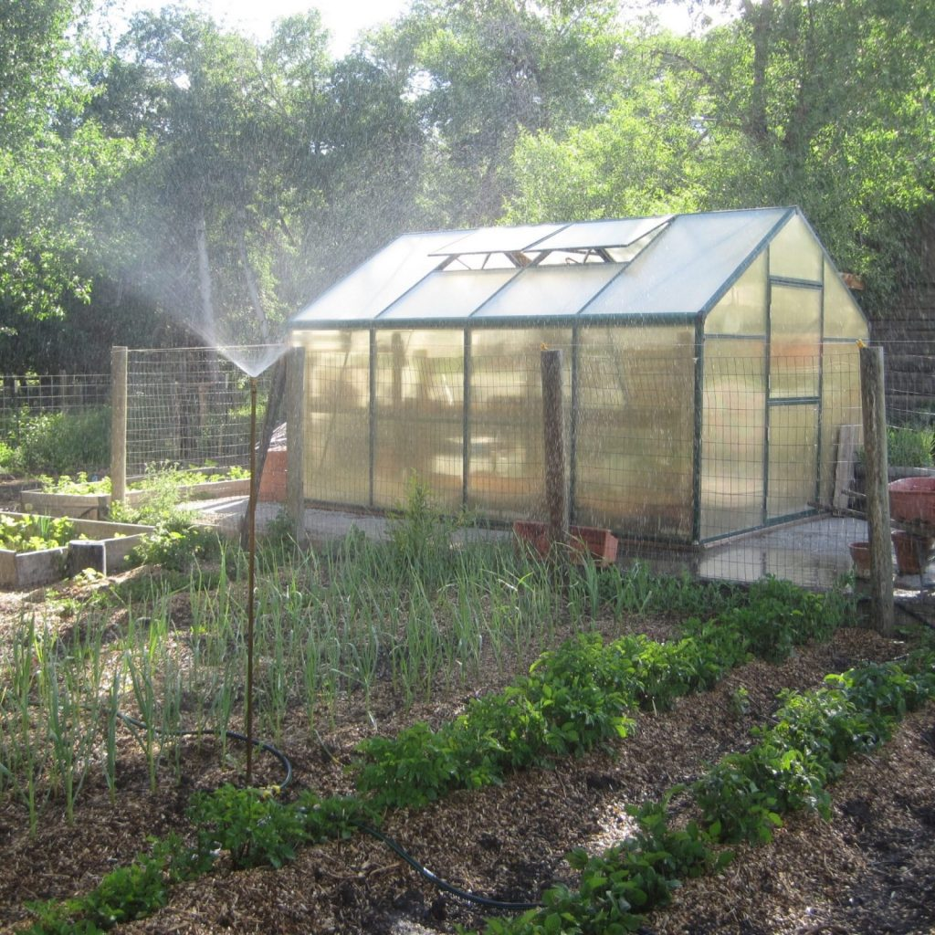 greenhouse in a large garden
