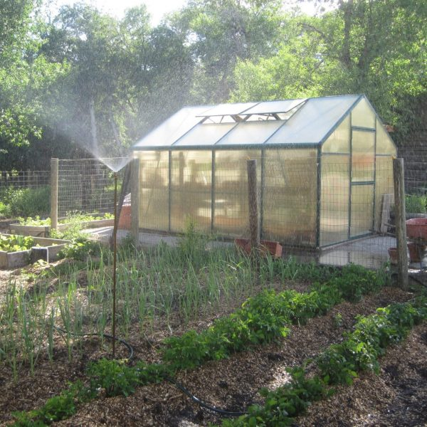 Learn more about growing a garden by using mulch around your plants and in your greenhouse.