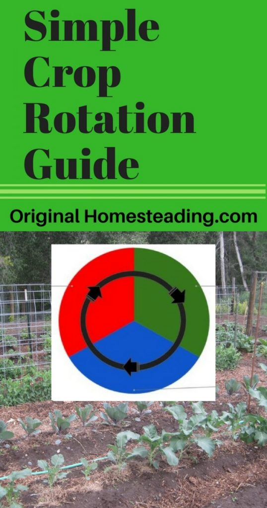 SImple Crop Rotation Guide