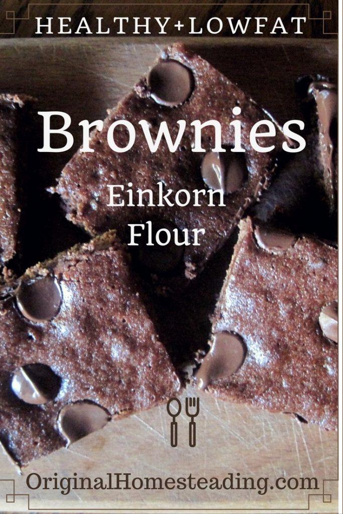Healthy Semi-Skinny Organic Brownies......