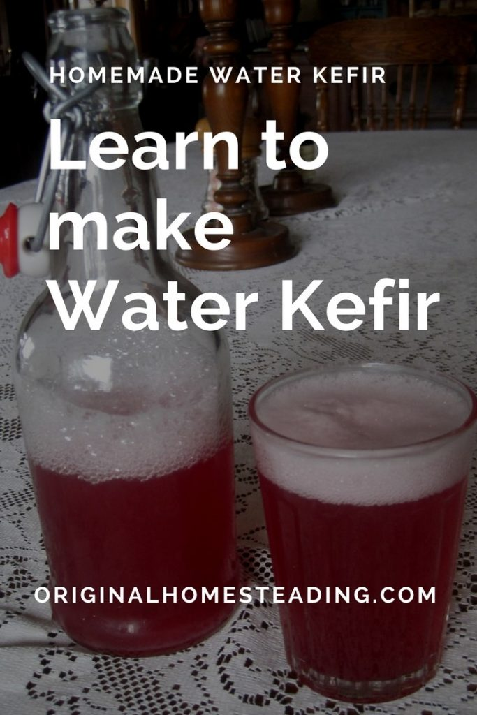 Water Kefir Soda is super bubbly and healthy.