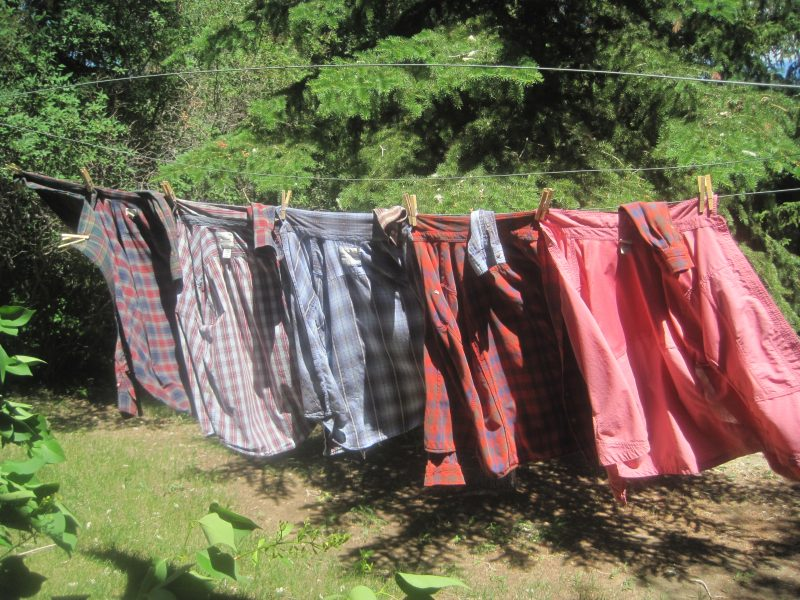Shirts Drying on Clothesline