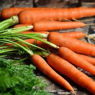 HOW TO STORE CARROTS for WINTER | In Your Refrigerator