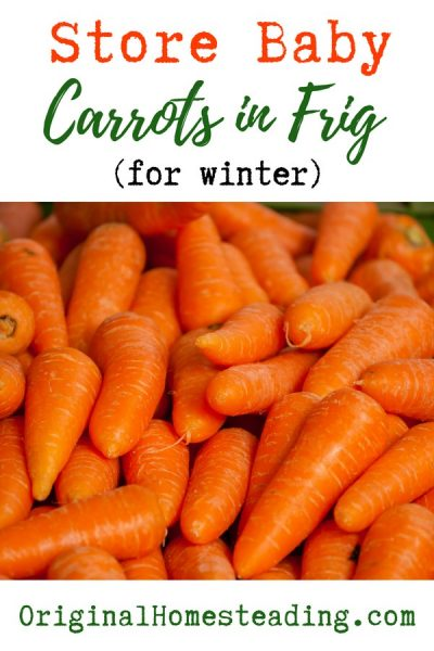 Store Baby Carrots in Frig