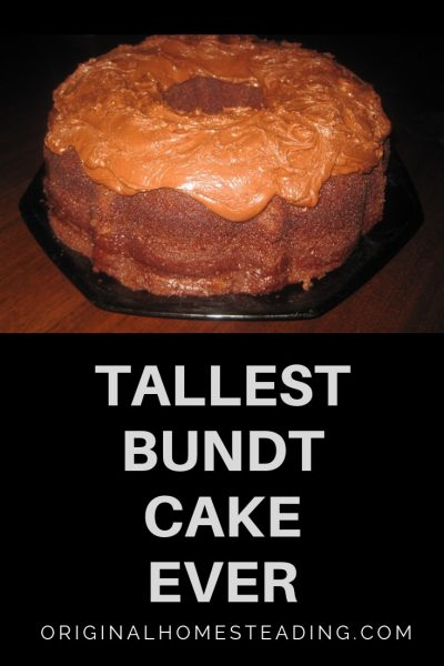 Tallest Bundt Cake with Low Sugar Homemade Chocolate Cake Recipe