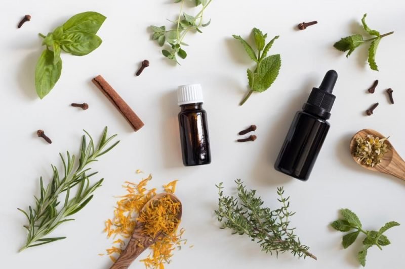 herbs and small bottles for making thieves oil