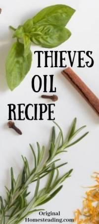 Thieves Oil Recipe (1)