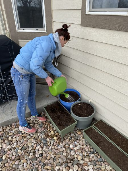 Watering Newly Planted Seeds