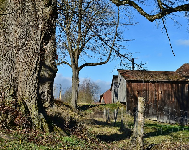 Rural Country Homestead