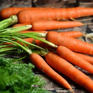 Store Baby Carrots for Winter