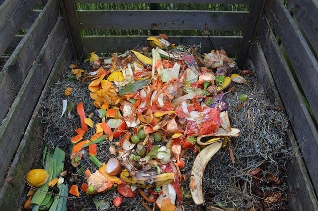 green waste in a home compost bin