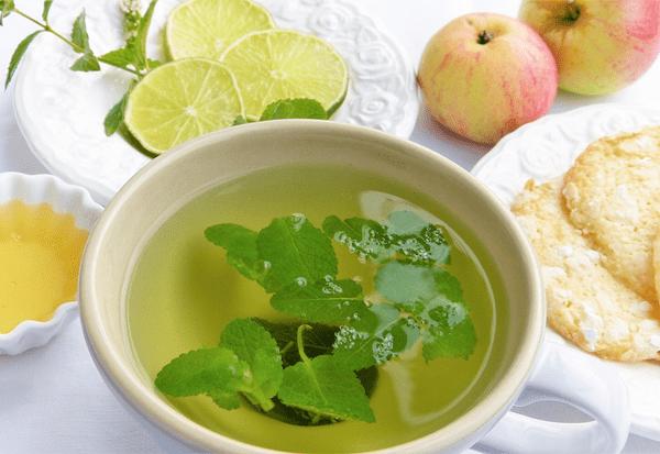 lemon balm tea in a white cup