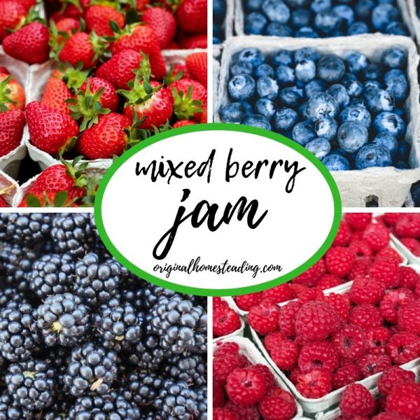 I love freezing strawberries, raspberries, blueberries and blackberries in the summer when they are at the peak of harvest and then making jam in the fall and winter.