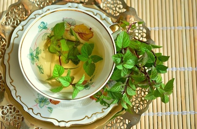 fresh peppermint sprig in cup of hot tea