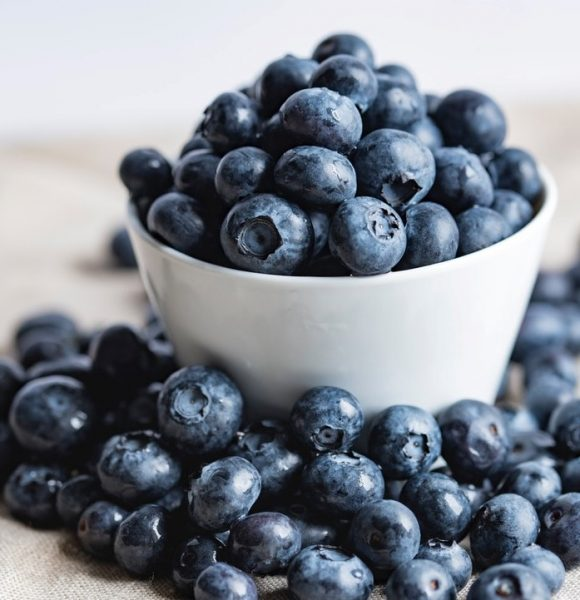 FREEZING BLUEBERRIES THE EASY WAY   Simple + FAST Method